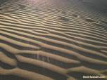 Huacachina sand dune ripples